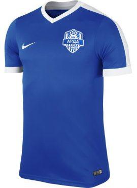 Мъжка тениска NIKE ARDA STRIKER IV TSHIRT